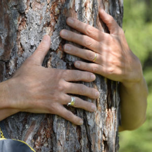 10 Verena Hiltpolt Waldbaden